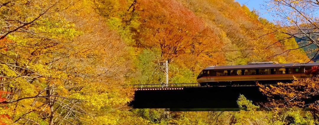 是より木曽路 遥か彼方の京や江戸を思い、人々が往来した木曽路。 歴史と文化に彩られ、自然豊かな木曽地域の魅力を、当地勤務の県職員が四季折々に発信していきます。 あなたも、木曽に寄っていきませんか?