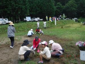 参加者全員で親水広場周辺の草刈を行いました