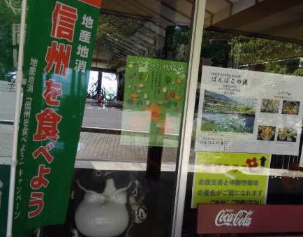 ぽんぽこ (1)