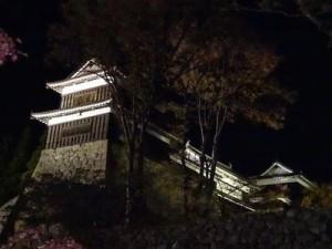 南櫓、東虎口櫓門、北櫓のライトアップ