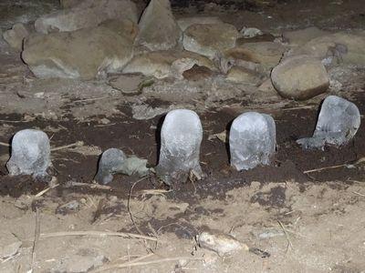 赤坂将軍塚古墳石室内の氷筍