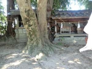 堀内神社3