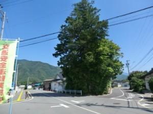 堀内神社1