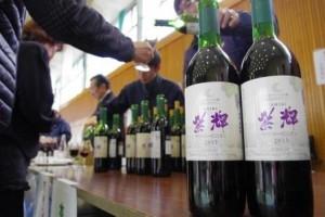 (上伊那)winefes