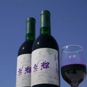 紫輝2013(宮田村観光協会)