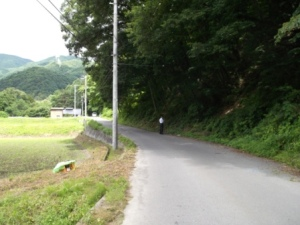 hitsuiwa1