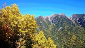 b鋸岳と紅葉3(歌宿下)