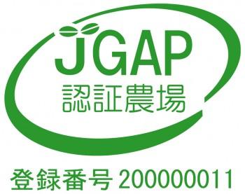 112_jgapstick
