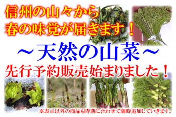 109_yoyaku-top