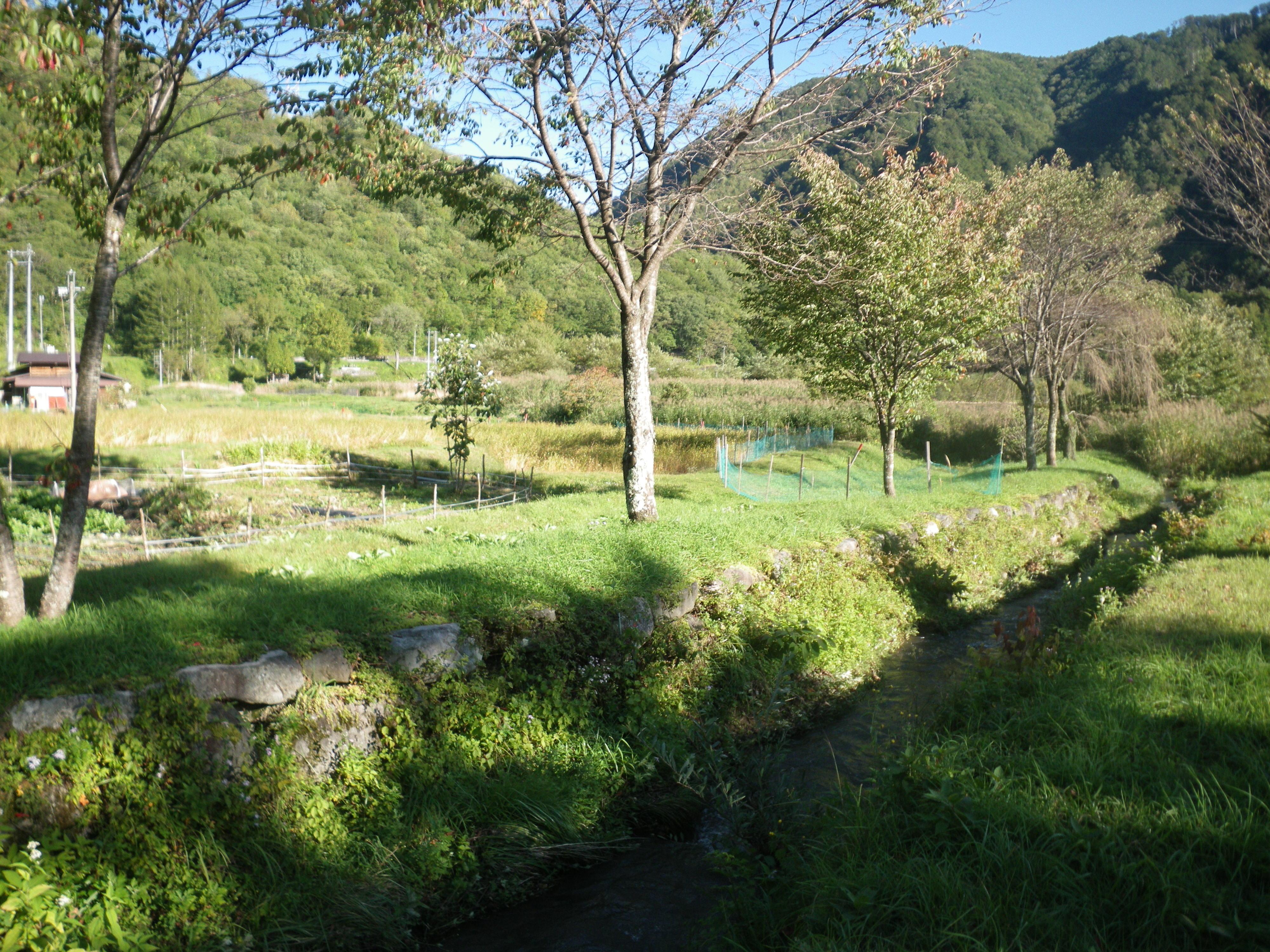 神秘の村、王滝③ | 是より木曽路