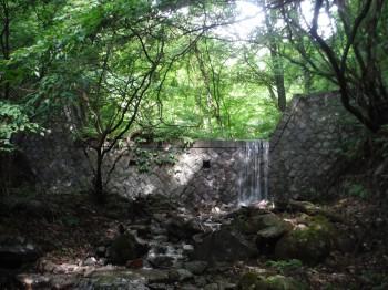 徳音寺 写真2
