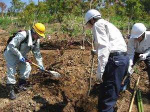 岡田財産区の議員さんの指導のもと、初めての作業に取り組んでいます。