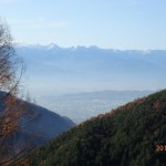 県有林からの眺め