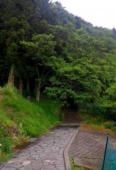 写真16桂泉院から峰山寺への小径