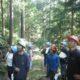 伝統ある有名林業地に触れる