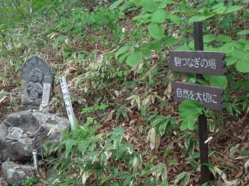 飯綱山3-2