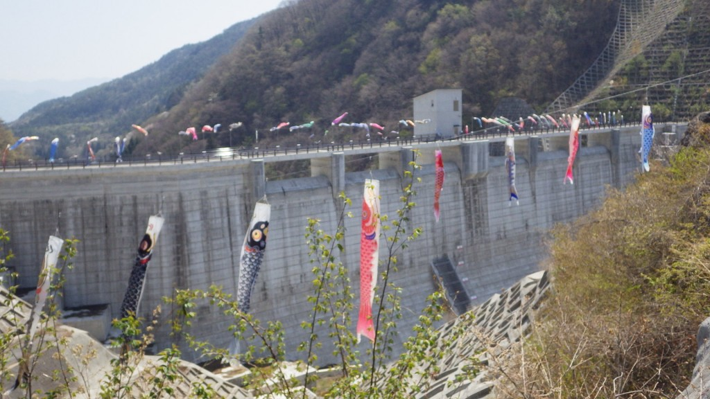 ダムと鯉のぼり2