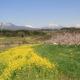 丹霞郷で北信五岳を覚えよう! ま み く と い  一目五山