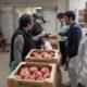 台風による被災リンゴを販売しました
