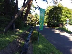 松並木公園駐車場入口