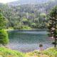 大河原峠から双子池、亀甲池を周回しました!!
