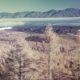 主伐と再造林のススメ