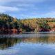 「白駒の池・苔の森」(佐久穂町・小海町)で紅葉が見ごろを迎えています!!