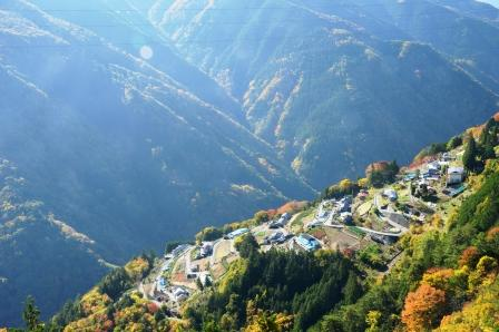 shimoguri1