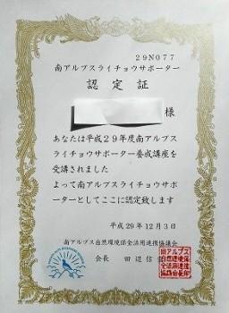 DSCN8411