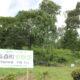 森🌳緑🌲『高森町 育樹祭』開催❕❕