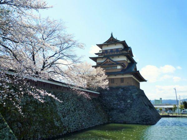高島城と桜2